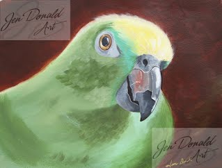 bird wildlife nature parrot macaw Jennifer Donald Colonial BeachVirginia Peddlers Market art fine artist